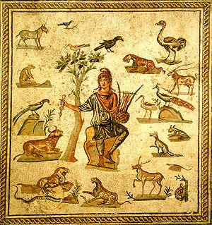 Orpheus Animals