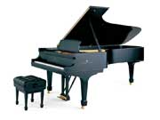 Steinway Piano model d